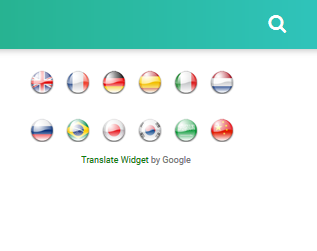 Google Translate Dengan Bendera