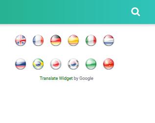 Google Translate Dengan Bendera