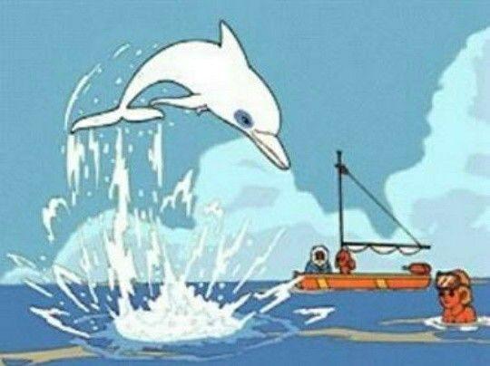 """""""Ум белият делфин"""" и любопитни неща,които не знаете за него (ВИДЕО)"""