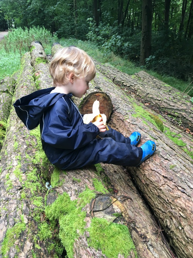 toddler-sitting-on-logs-and-eating-a-banana
