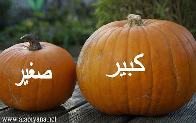 sifat bahasa arab