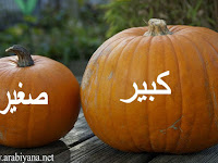Kata Sifat Bahasa Arab Sehari Hari Beserta  Antonim dan Artinya