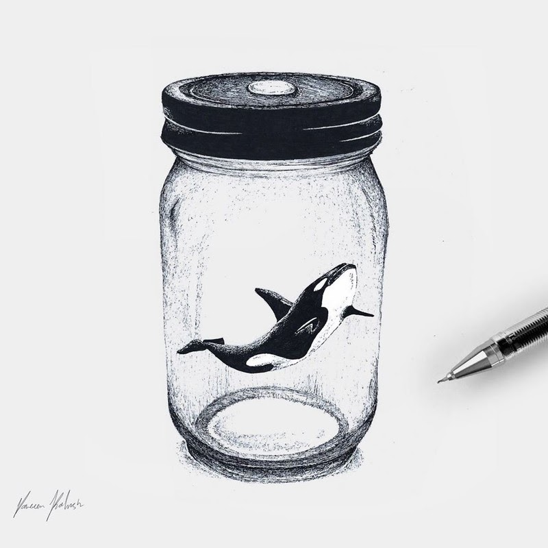06-Orca-in-a-Jar-Surreal-Animals-Mostly-Ink-Drawings-www-designstack-co