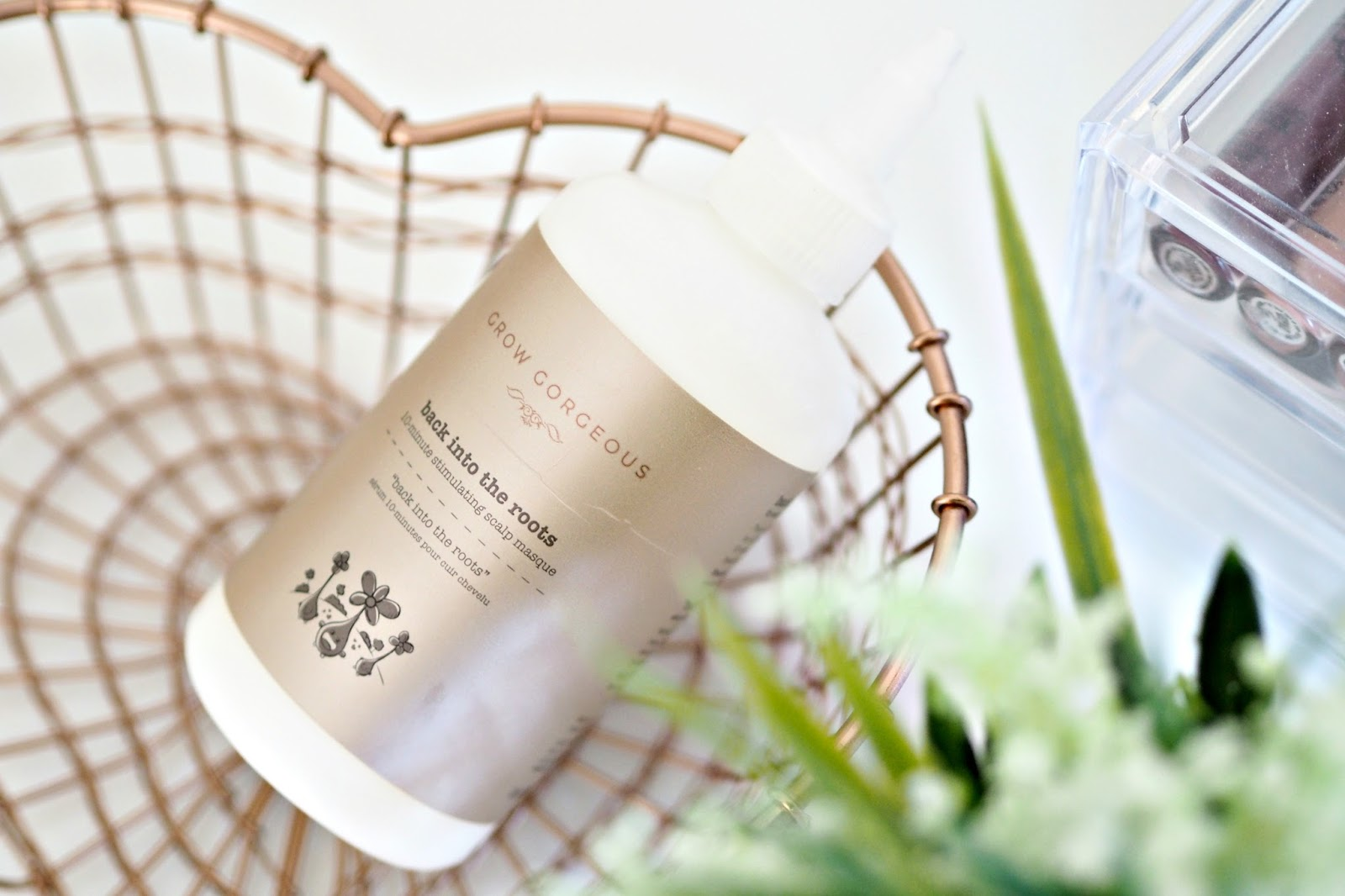 Grow Gorgeous Back into The Roots hair masque review