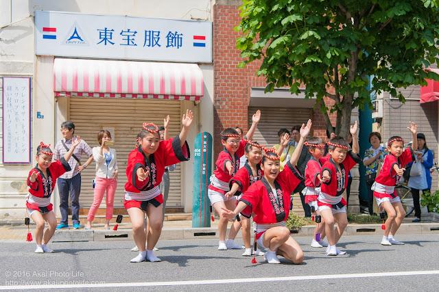 飛鳥連、マロニエ祭り、子供踊りの写真 その1