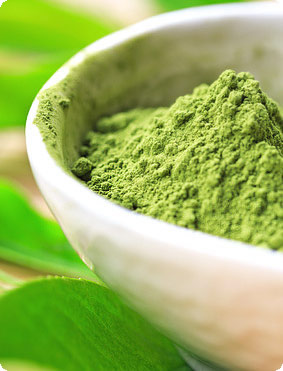 buy Premium Uji Matcha Green tea powder from uji kyoto Japan Bulk  lagre bag Ceremonial Culinary