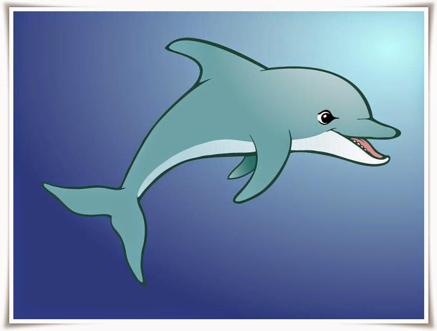 gambar kartun lumba-lumba
