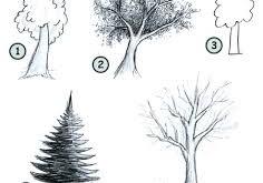 تحميل اختبار رسم الشجرة pdf