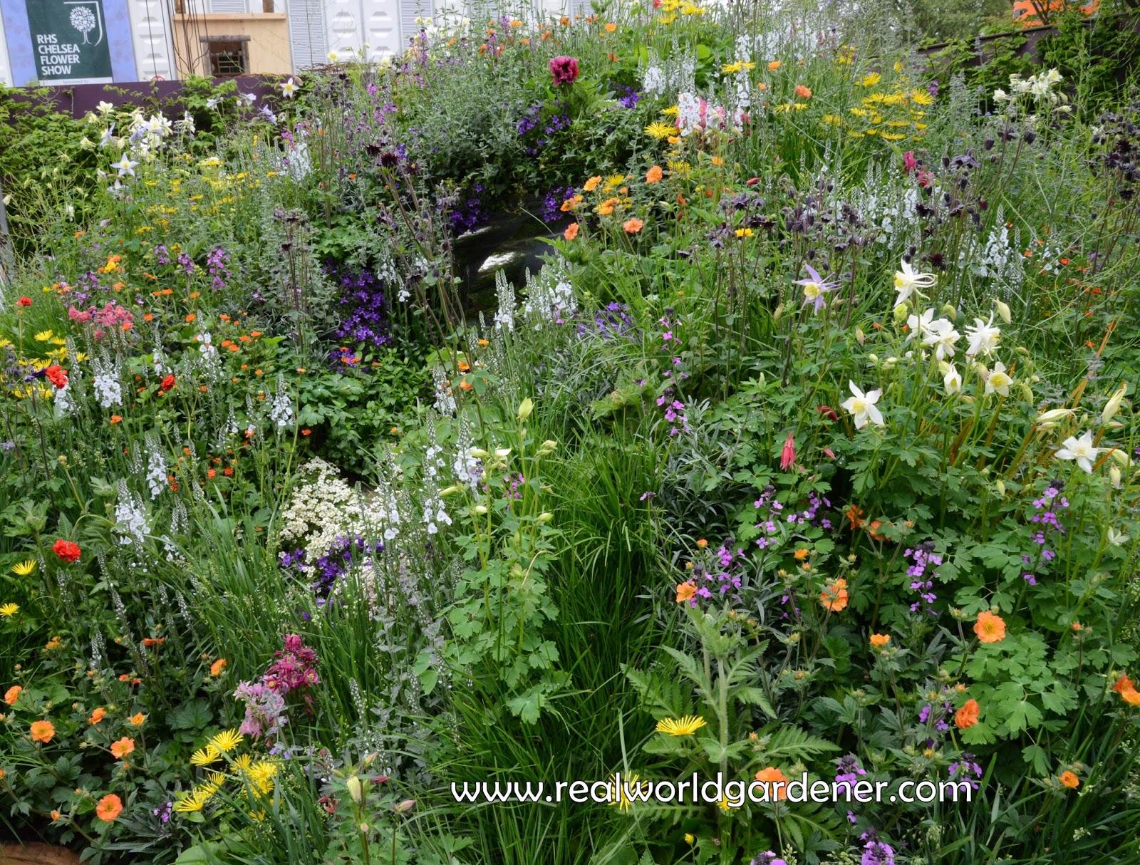 Real world gardener scented bulbs part 3 in design for Garden design podcast