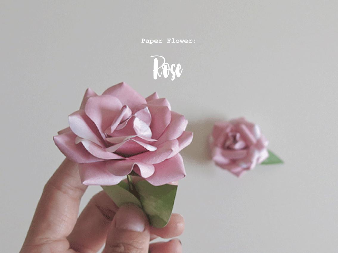 Evelyn Gasman Paper Flower Rose