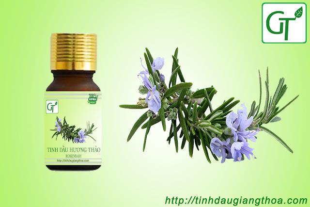 Tinh dầu hương thảo nguyên chất
