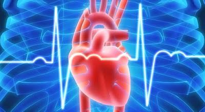 Cara Yang Ampuh Mengatasi Jantung Berdebar