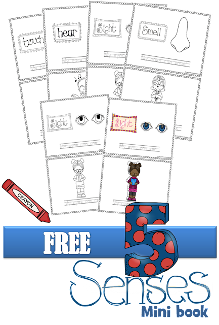 Free 5 Senses Mini Book - this free priintable is such a fun way for kids to learn and review the five senses for preschool, kindergarten, 1st grade, 2nd grade, 3rd grade. NO PREP! Just print, cut in half, staple together, and color.