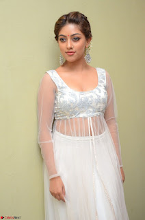 Anu Emmanuel in a Transparent White Choli Cream Ghagra Stunning Pics 059.JPG
