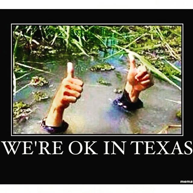 Flood%2BMeme my (re)viewpoint flooding in houston,Houston Flood Meme