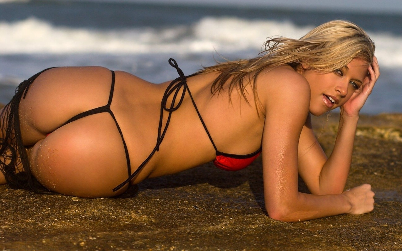 All Sports Players Kelly Kelly Divas Hot Hd Wallpapers 2012-7044