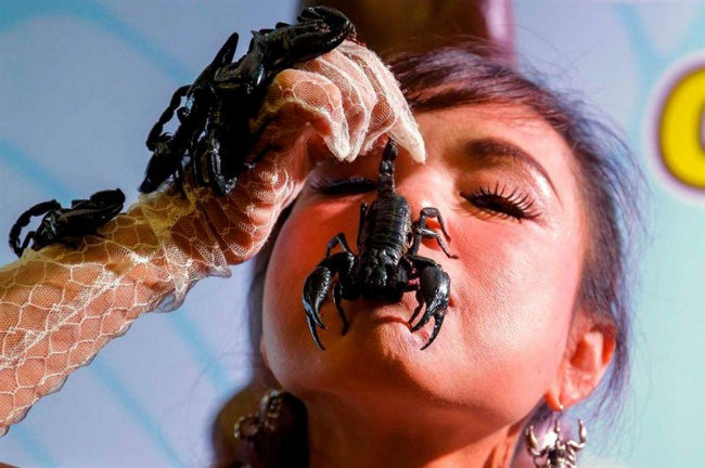 Девушка вся в крупных скорпионах