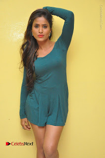 Telugu Actress Prasanthi Stills in Green Short Dress at Swachh Hyderabad Cricket Press Meet  0019.JPG