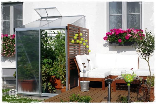 Gartenblog Topfgartenwelt Tomaten Tomatenanbau in großen Töpfen und Trögen: Tomatenpflanzen selber ziehen