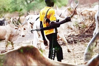 18 year old herdsman sentenced to two years imprisonment in Ekiti