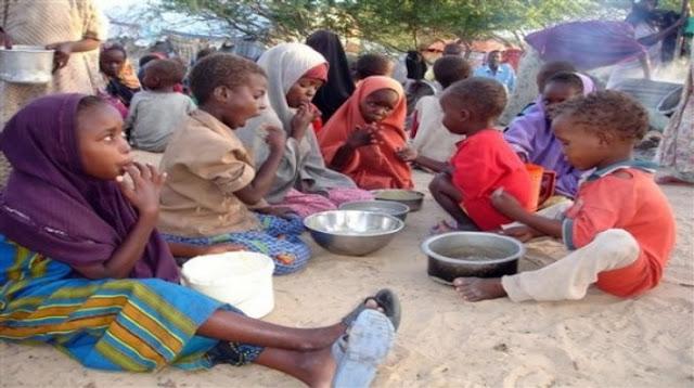Sekelumit Ulasan Tentang Kelaparan dan Ketahanan Pangan Global