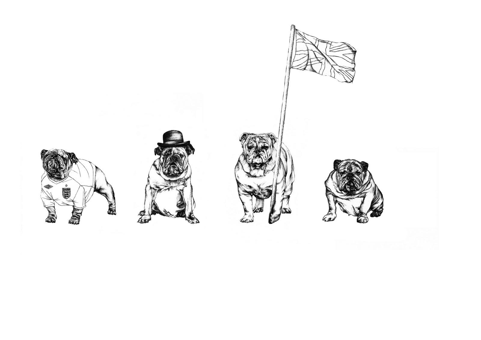 Rebecca Harman Illustration British Bulldog