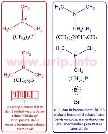 Menurut Teori Asam Basa Lewis Basa Adalah : menurut, teori, lewis, adalah, Peran, Sentral, Konsep, Asam-Basa, Dalam, Reaksi, Kimia, Organik