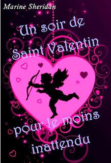 http://marinesheridan.blogspot.fr/2014/11/un-soir-de-saint-valentin-pour-le-moins.html