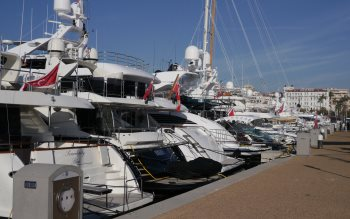 Wallpaper: Yachts in Cannes harbor
