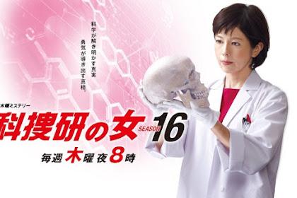 Sinopsis The Woman of S.R.I. Season 16 (2016) - Serial TV Jepang