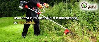 Motocoase