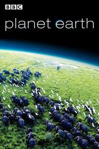 Watch Planet Earth Online Free in HD