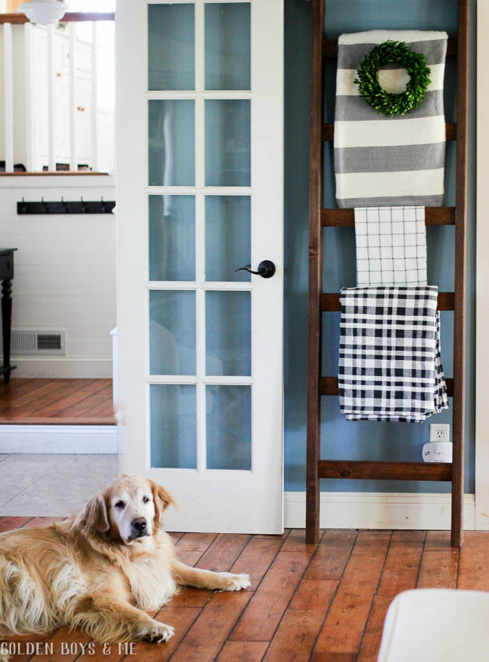Golden retriever and DIY ladder with blankets with spring decor