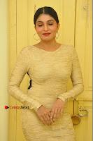 Actress Pooja Roshan Stills in Golden Short Dress at Box Movie Audio Launch  0008.JPG
