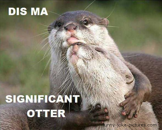 Funny Otter Caption Image - Dis ma significant otter