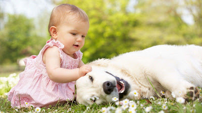 cuty-baby-in-light-pink-frock-with-her-dogy