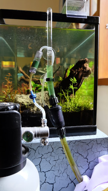 CO2 Aquascape Injection