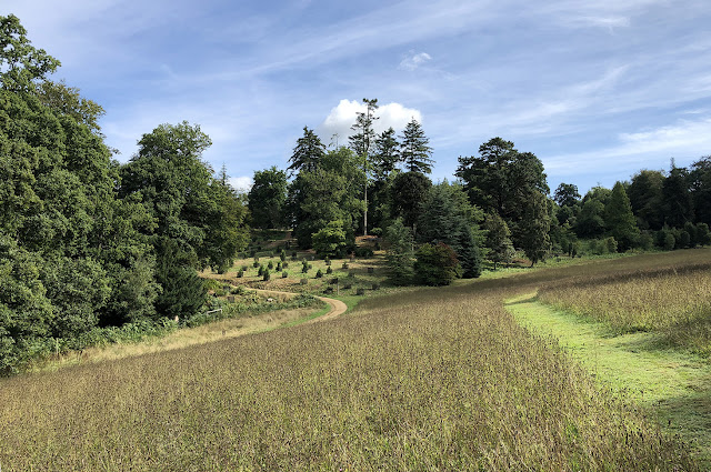 A meadow at Wakehurst, West Sussex.  17 August 2018.