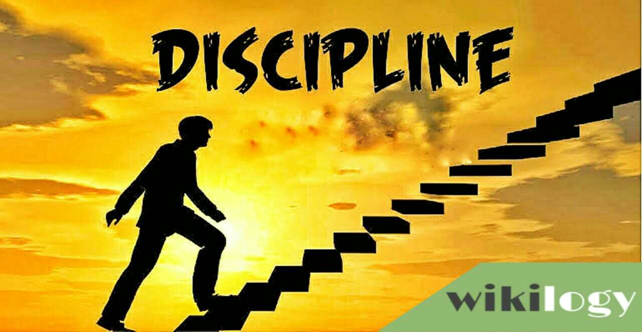 Discipline Essay & Composition