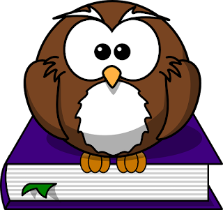 Owl Cartoon Sitting on a Book, Waiting
