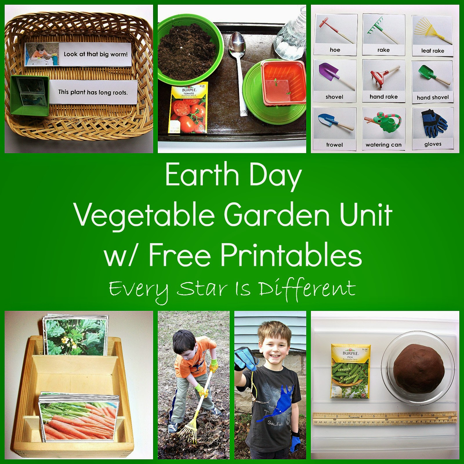 Vegetable Garden Unit