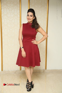 Telugu Tollywood Anchor Manjusha Pos in Red Short Dress  0154.JPG