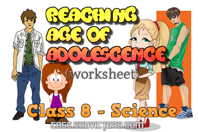 CBSE Class 8 - Science - CH10 - Reaching Age of Adolescence (Worksheet)