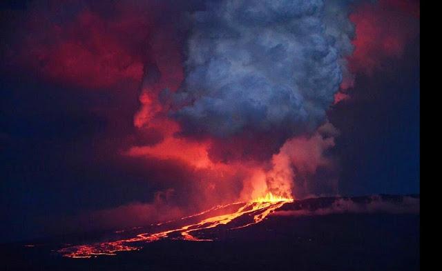 volcan wolf erupcion isla isabela