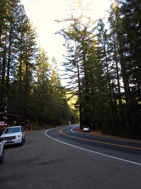 Redwood Highway California
