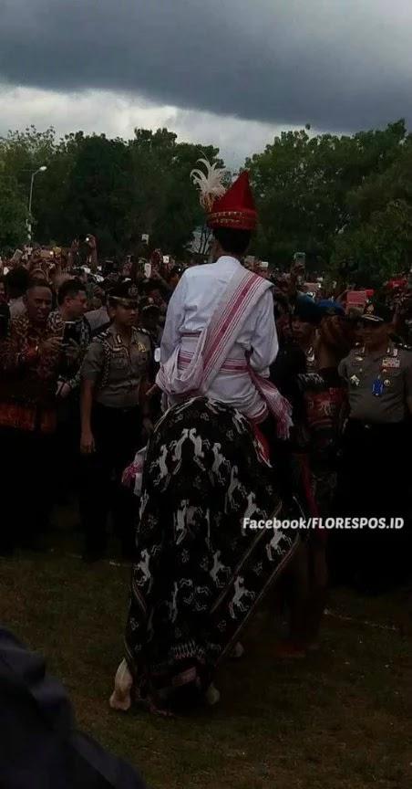 Presiden Jokowi di punggung kuda Sandelwood