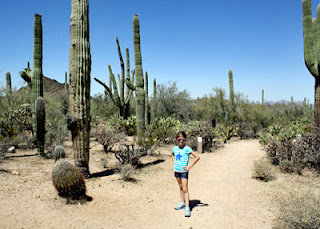 Tessa on the trail to Valley View Overlook at Saguaro National Park - West.