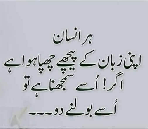 Urdu Quotes On Beauty T