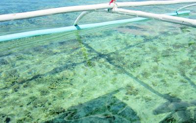 sea-bed