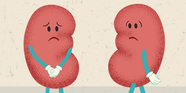 Penjelasan Kenapa Penderita Gagal Ginjal Tak Bisa Kencing